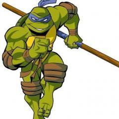 TurtleMan